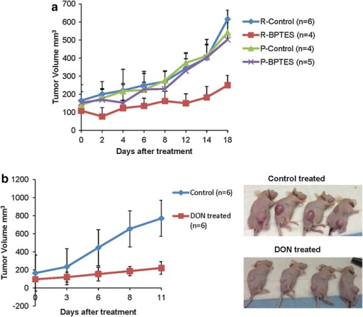 Vemurafenib resistant melanoma tumors are sensitive to glutaminase inhibitor treatment in vivo. a Nod Scid Gamma (NSG) mice were injected with 5 × 106 of M249 parental or single drug resistant cells subcutaneously on the right flank. When tumor size reached an average of 100 mm3 tumor cell volume, treatment with 15 mg/kg of BPTES or vehicle control (DMSO) was provided every other day through intraperitoneal injection. Measurements were taken for tumor length and width. Tumor volume (mm3) was calculated by multiplying (length × width × width)/2. Graph represents mean tumor volume ± SD. b Nude mice were injected with 2 × 106 of M249 resistant cells subcutaneously on right flank. When tumor size reached an average of 100 mm3 tumor cell volume, treatment with 20 mg/kg of L-DON or vehicle control (water) was provided twice a week through intraperitoneal injection. Graph represents mean tumor volume ± SD.