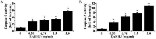 "Effects of Hypericum japonicum ethyl acetate extract (EAEHJ) on the activity of caspases-3 and 9 in HepG2 human hepatoma cells. HepG2 human hepatoma cells were treated with various concentrations of EAEHJ for 24 h. (A) Caspase-9 and (B) caspase-3 activity levels were determined using a colorimetric assay. The data were normalized to the caspase activities within the control cells (treated with 0.5% dimethyl sulfoxide vehicle) and represented as the ""fold of control"". The data are presented as the mean ± standard deviation from three independent experiments. *P< 0.01, vs. the control cells."