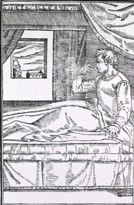 <p>Patient with arm flap detached from arm and on nose.</p>