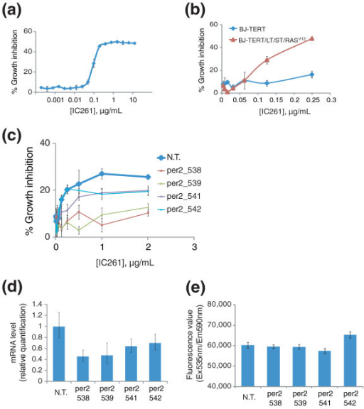 PERIOD2 is a key substrate of CK1ε that mediates IC261-induced growth inhibition. (a) IC261, a kinase inhibitor of CK1ε, induces growth inhibition in HT1080 cells. (b) IC261 treatment in BJ-derived cell lines showed a similar degree of cancer cell selective growth inhibition as shCSNK1E treatment. (c) Knocking down PER2 in HT1080 cells rescues growth inhibition induced by IC261. HT1080 cells were infected with indicated lentiviruses containing different shRNA clones targeting PER2 (per2_538, per2_539, per2_541, or per2_542). After two days of infection, cells were treated with the indicated concentration of IC261 and percent growth inhibition was determined using alamar blue. Values in (a-c) represent the mean ± standard deviation of triplicate data. (d) Cellular RNAs were prepared from the same set of virus infected cells in (c), and real-time PCR was performed with a PER2-specific primer set to monitor the efficiency of knock down by shRNA clones. (e) Proliferation rate of HT1080 cells infected with the same set of viruses as in (c) was determined using alamar blue assay. Error bars in (d,e) indicate one standard deviation of triplicate data. N.T., non-targeting shRNA clone.