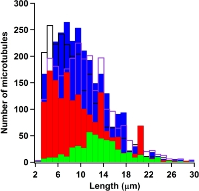 Relative microtubule length distributions.Filled blue bars are length calculations for the alpha casein                            passivation, filled green bars are for the beta casein passivation,                            filled red bars are for the kappa casein passivation, unfilled black                            bars are for the mixed casein passivation, and unfilled purple bars are                            for the whole casein passivation. Length measurements were performed                            only on tracked microtubules and are estimations from computing the                            Convex Hull perimeter on eroded images of microtubules.