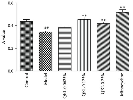 Effects of different dosages of QKL on the viability of BV2 microglial cells in the hypoxia/reoxygenation model. The cells were treated with 0.0625%, 0.125%, or 0.25% QKL or 200 μM minocycline before hypoxia. The MTT method was performed, and the results are expressed as the means ± SD; n = 6.  ##P < 0.01 compared to the control group; **P < 0.01 compared to the model group.