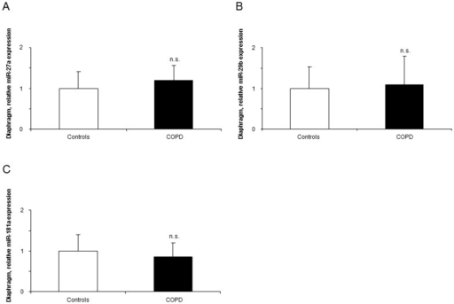 Levels of expression of muscle-enriched microRNAs in the diaphragms of COPD patients and healthy controls.Mean values and standard deviation (relative expression) of miR-27a, -29b, and -181a expression did not differ (n.s., non-significant) in the diaphragms of COPD patients compared to controls (panels A, B, and C). Samples were always run in triplicates and their corresponding expression was calculated as the mean value of the 3 measurements.