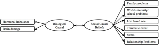 Proposed causal beliefs model.