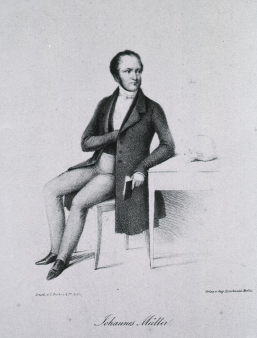 <p>Seated by table, hand in vest, left pose, face right.</p>