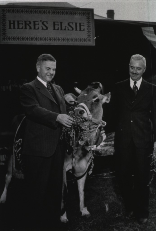 <p>Thomas Parran and another man stand next to Elsie the Cow at a county fair.</p>