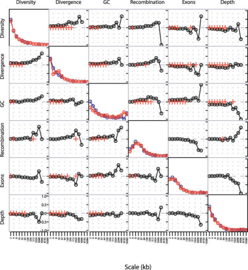 Power Spectra and Pairwise Correlations of Detail Wavelet CoefficientsDiagonal plots show the power spectrum of the wavelet decomposition of each factor on the long (red) and short (blue) arms of Chromosome 20. Off-diagonal plots show the rank correlation coefficient between pairs of detail wavelet coefficients at each scale on the long (top right) and short (bottom left) arms. Red crosses indicate significant correlations (p-value < 0.01; Kendall's rank correlation). Scale is shown in kilobases.