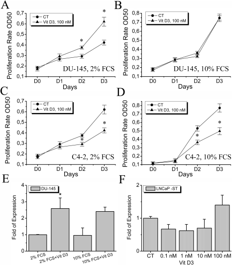 The effects of 1,25-dihydroxyvitamin D3 on androgen-independent cell lines.A, B, The effects of 1,25-dihydroxyvitamin D3 on androgen receptor-deficient DU-145 cell line in both 2 and 10% FCS-containing RPMI medium (A and B, respectively), * - P<0.05 (as compared to control), n = 3. C, D, The effects of 1,25-dihydroxyvitamin D3 on androgen-insensitive LNCaP C4-2 cell line in both 2 and 10% FCS-containing RPMI medium (C and D, respectively), * - P<0.05 (as compared to control), n = 3. E, the relative expression levels of TRPV6 channel in DU-145 cells treated with 100 µM 1,25-dihydroxyvitamin D3 for 3 days in 2 and 10% FCS-containing RPMI medium, * - P<0.05 (as compared to control), n = 3. F, the expression of TRPV6 channel induced by 100 nM 1,25-dihydroxyvitamin D3 for 3 days in LNCaP cells in steroid-deprived RPMI medium (LNCaP-ST), n = 3.