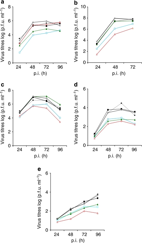 Growth curves of various avian and human influenza viruses in importin-silenced human cells.Endogenous human importins (α1–α7) were silenced using siRNA in human lung cells (A549) and infected with (a) A/FPV/Rostock/1/34 (H7N7), (b) A/Thai/KAN-1/04 (H5N1), (c) A/Victoria/3/75 (H3N2), (d) A/Sachsen-Anhalt/101/09 (H1N1v) or (e) A/Hamburg/NY1580/09 (H1N1v). Growth curves show controls (black, filled diamonds), α1 (blue, squares), α3 (green, filled triangles), α4 (black, filled squares), α5 (black diamonds) and α7 (red triangles)-silenced cells.