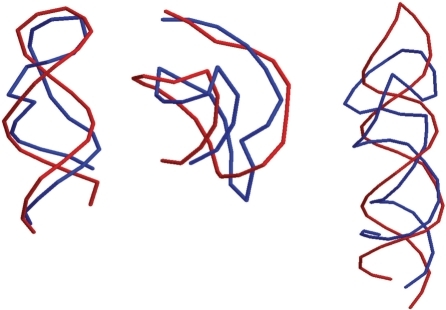 Overlay representation of the best centroids (red) of 1q9a, 2a43 and 1xjr (from left to right) with their native structures (blue). These three RNA molecules have lengths of 27 nt, 26 nt and 49 nt.