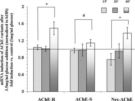 mRNA expression of N-extended AChE, AChE-S, and AChE-R isoforms following treatment of Y79 cells with glucose for 1 h. Y79 cells were pre-treated for 16–24 h in starvation medium (1% FBS and 1 mg/ml of glucose) and then with 3.5 mg/ml glucose for different time intervals. Total RNA was extracted and cDNA was prepared for real-time PCR procedure as described under Materials and Methods. Results are presented as fold of control cells cultured in starvation media. Values are means ± SEM, (N = 4). *p < 0.05, #p = 0.12.