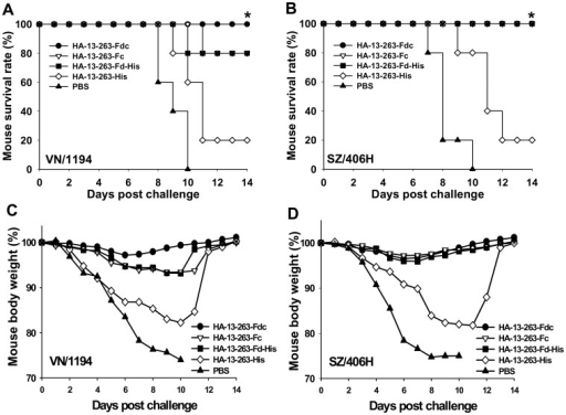 Comparison of cross-protective activity of HA-13–263 proteins against lethal H5N1 virus challenge.PBS was used as the control. Survival rate (%) of mice vaccinated with HA-13–263 proteins challenged with lethal dose of H5N1 virus from VN/1194 (clade 1) (A) and SZ/406H (clade 2.3.4) (B). * indicates significant difference (P<0.05), respectively, between HA-13–263-Fdc and HA-13–263-His group, or PBS control, for VN/1194 virus, and between HA-13–263-Fdc, HA-13–263-Fc, or HA-13–263-Fd-His vaccination groups and HA-13–263-His group, or PBS control for SZ/406H virus. Percentage of body weight change (%) of HA-13–263-vaccianted mice after challenge with VN/1194 (C) and SZ/406H (D) H5N1 virus was shown.