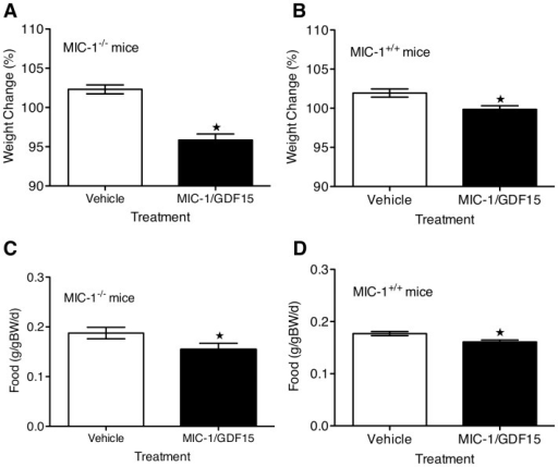 Physiological levels of human MIC-1/GDF15 reduce weight and food intake in mice.Male MIC-1−/− and MIC-1+/+ mice were infused with human MIC-1/GDF15 (1ug/20gBW/d) or vehicle via osmotic mini-pump. Food intake, body weight and serum levels of human MIC-1/GDF15 were measured on day 5 of infusion. (A) MIC-1/GDF15-treated MIC-1−/− mice had an average serum MIC-1/GDF15 level of 643±67 pg/ml and weighed 95.86±0.77% of their starting body weight whilst vehicle-treated mice weighed 102.3±0.75% of their starting weight (n = 6/group, p<0.01 unpaired t-test). (B) MIC-1/GDF15-treated MIC-1+/+ mice had an average serum MIC-1/GDF15 level of 576±45 pg/ml and weighed 99.86±0.47% of their starting weight whilst vehicle-treated mice weighed 102±0.52% (n = 14, p = 0.01 unpaired t-test). This decreased body weight in both genotypes was associated with reduced food intake. (C) MIC-1/GDF15-treated MIC-1−/− and (D) MIC-1/GDF15-treated MIC-1+/+ consumed significantly less food than the matched vehicle-treated mice of same genotype (MIC-1−/−n = 6/group, p = 0.04; MIC-1+/+n = 14/group, p<0.01 unpaired t-test). Data expressed as mean ± SE.