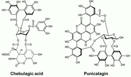 Structures of chebulagic acid (CHLA) and punicalagin (PUG). The chemical structures of the two hydrolyzable tannins under study, chebulagic acid (CHLA) and punicalagin (PUG), are presented.