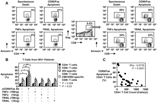 CD95/Fas-mediated, but not TRAIL- or TNFα-induced T cell apoptosis is increased in HIV-1-infected individuals and correlates inversely with CD4+ T cell counts.(A) Representative flow cytometry plots depicting apoptosis of CD4+ T cells and HIV-specific CD8+ T cells induced by anti-CD95/Fas antibody, SuperKiller TRAIL or TNFα treated PBMC from HIV-1+ individuals for 14 hours. (B) Pooled data showing percent apoptosis of CD4+ T cells (n = 8), total CD8+ T cells (n = 8), HIV-specific (n = 5) and CMV/EBV-specific (n = 5) CD8+ T cells after anti-CD95/Fas-, TRAIL-, and TNFα-treatment. Bars depict means ± standard errors. The P values were calculated using Student t test for paired samples. (C) Spearman's rho correlation shown between the frequency of CD95/Fas-mediated apoptosis of CD4+ T cells and absolute CD4+ T cell counts (n = 31).