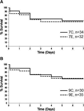 Survival rates of groups subjected to 7-min. ischaemia (A) and 9-min. ischaemia (B) are illustrated using Kaplan–Meier survival curves. 7C: control group subjected to 7-min. ischaemia; 7E: EPO group subjected to 7-min. ischaemia; 9C: control group subjected to 9-min. ischaemia; 9E: EPO group subjected to 9-min. ischaemia. Survival rates at day 2 after SCI were 70.6%, 68.8%, 73.3% and 74.3%, and 65.5%, 63.0%, 62.9% and 63.7% at day 7 in the 7C, 7E, 9C and 9E groups, respectively. There were no significant differences in survival rate between groups 7C and 7E (P= 0.797) or between groups 9C and 9E (P= 0.971), according to the Log-rank test.