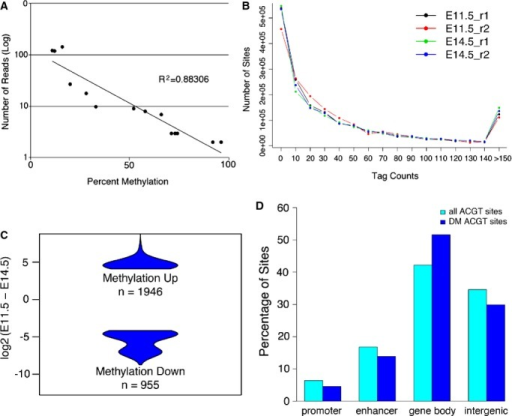 Analysis of the level of DNA methylation and differential methylation in the developing mouse heart. A, Methyl sensitive tiny fragment enrichment/massively parallel sequencing (MSFE/MPS) accurately detects levels of methylation as confirmed by Sequenom's MassArray of analyzed sites representing 0%, 25%, 50%, 75%, and 100% methylation determined by MSFE/MPS. B, Distribution of all ACGT sites with different numbers of tag counts from MSFE/MPS analysis. C, Violin plots showing the difference in tag counts for the 2901 ACGT sites that were significantly differentially methylated between E11.5 and E14.5. D, The distribution of all and differentially methylated (DM) ACGT sites in relation to gene annotation.