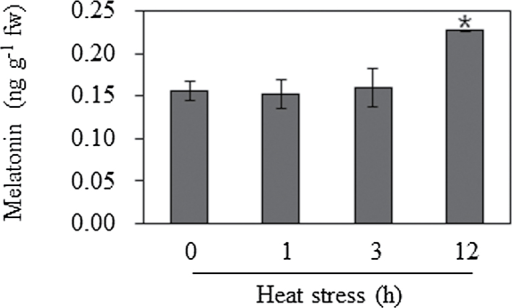 Melatonin levels in response to heat stress in laver (Pyropia yezoensis). Leafy gametophytes of Pyropia yezoensis were challenged at a high temperature of 25 °C. Laver was collected at each indicated time point. Melatonin levels were quantified by HPLC. Data represent the means±standard deviation of three replicates. An asterisk indicates a significant difference from the wild type (P<0.05).