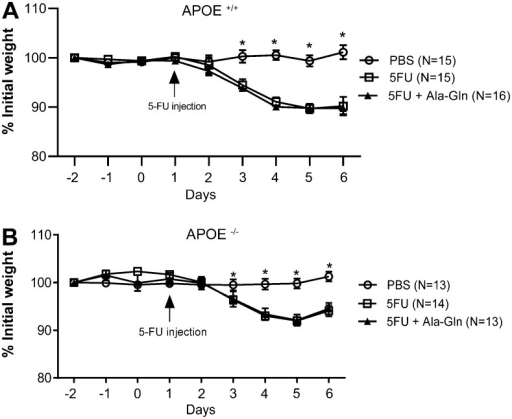 Weight curves of wild-type (APOE+/+) (A) andAPOE knockout (APOE-/-) mice (B) following5-fluorouracil (5-FU)-induced mucositis and of unchallenged controls receivingphosphate buffered saline (PBS). Data are reported as means±SEM. *P<0.001vs other groups (one-way ANOVA, followed by the Bonferronimultiple test).