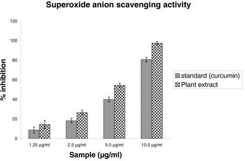 superoxide anion radical