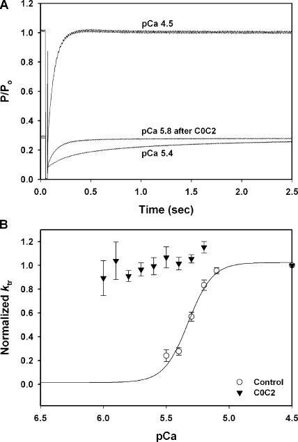 Effects of C0C2 on rates of tension redevelopment (ktr). (A) Smoothed force traces showing steady-state force measurements after a release and restretch maneuver (ktr) during maximal Ca2+ activation (pCa 4.5) and during submaximal Ca2+ activation (pCa 5.4). Incubation with 5 μM C0C2 accelerated ktr at low Ca2+ (pCa 5.8) to near maximal rates. (B) 5 μM C0C2 accelerated ktr at all levels of submaximal Ca2+ activation.