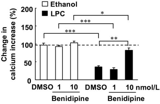 Effects of benidipine with or without LPC on ACh-induced increases in [Ca2+]i. Endothelial cells were treated as described for Figure 3. Benidipine (1 or 10 nmol/L) or DMSO was simultaneously added with LPC or ethanol. Changes in ACh-induced increases in calcium are expressed as percentage fluorescence value of ACh-induced increases in calcium prior to LPC or ethanol treatment. Each value represents the mean ± S.E. of 7 cells. *P < 0.05, **P < 0.01, ***P < 0.001 compared between indicated groups.