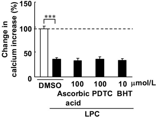 Effects of anti-oxidants on ACh-induced increases in [Ca2+]i with LPC. Fura-2 loaded endothelial cells were treated with the anti-oxidants ascorbic acid, PDTC and BHT for 30 min. ACh (3 μmol/L) was added before and after treatment. Data are expressed as percentage value of ACh-induced increases in calcium prior to the treatment. Each value represents the mean ± S.E. of 7 cells. ***, P < 0.001 compared between indicated groups.