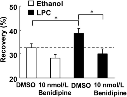 Effects of benidipine on fluorescence recovery one second after the end of photobleaching. NBD-PC loaded endothelial cells were treated with LPC (3 μmol/L) or ethanol (0.03%) for 30 min. Benidipine (10 nmol/L) or DMSO was simultaneously added with LPC or ethanol. Each value represents the mean ± S.E. (n = 18–28). *P < 0.05 compared between indicated groups.