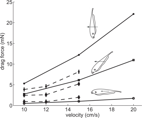 Measured and computed drag on the fish body at different body pitch angles.––,  ––; ; ––; . Dashed lines indicate experimentally measured drag, while solid lines show the drag estimated with computational fluid dynamics. Insets show orientation of fish cast while being towed at these angles.