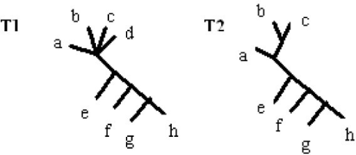 Illustration of strict frequent splitset. Two trees built from strict frequent splitset of trees from Fig. 6.