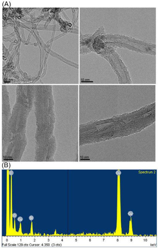 TEM images and EDX spectra of nanohybrid. (a) TEM images of MWNT-POSS nanohybrid and (b) EDX spectra of MWNT-POSS nanohybrid.