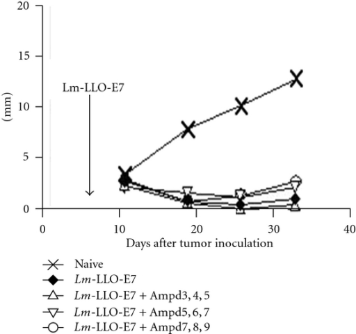 Effect of ampicillin treatment on therapy of TC1 by ADXS11-001. C57BL/6 mice were injected with 1 × 105 TC1 tumor cells. Seven days later, the mice were treated with 0.1 × LD50 of ADXS11-001. Beginning 3, 5, or 7 days after ADXS11-001 treatment, some of the mice received daily injections of 10 mg of Ampicillin, delivered for three consecutive days; the mice were then maintained on drinking water supplemented with Ampicillin at a concentration of 0.5 mg/mL. The data is adopted from [17].