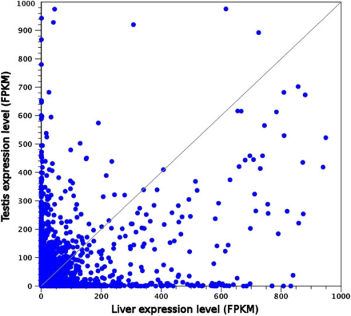 Scatter plot depicting the expression levels (calculated as FPKM, Fragments Per Kilobase per Million fragments mapped) in liver and testis. Genes whose expression levels are identical in the two organs are located on the bisector. For graphical representation convenience, only genes whose expression was lower than 1,000 FPKM in both tissues are shown (therefore 79 genes are not shown in the graph).