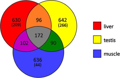PMC3750513_1471 2164 14 538 8 venn diagram depicting the overlap between liver, testi open i