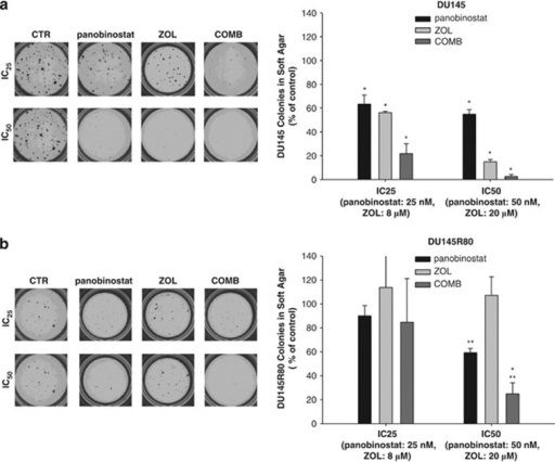 Synergistic inhibition of soft agar colony formation by | Open-i