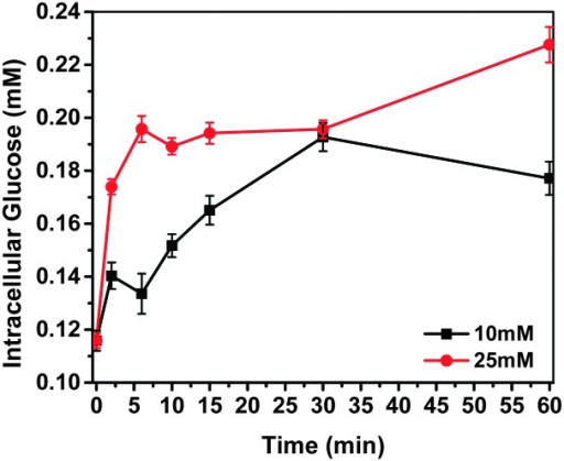 Intracellular glucose concentration detected by G-PS. 1   Open-i