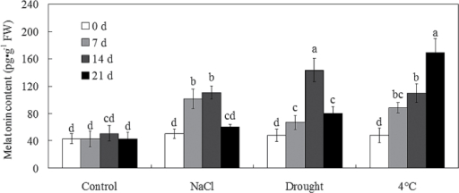The endogenous melatonin level was induced by salt, drought, and cold stresses in bermudagrass. Twenty-eight-day-old bermudagrass plants were treated with control, 300mM NaCl, drought, and cold (4 °C) stresses for 0, 7, 14, and 21 d, respectively. Bars with different letters above the columns of figures indicate significant differences at P<0.05 (Duncan's range test).