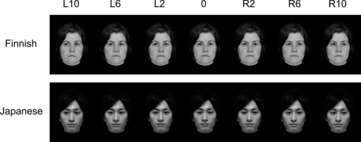Examples of Finnish and Japanese stimulus faces with various gaze directions.The figure illustrates straight gaze (0°) and gazes averted at 2°, 6°, and 10° to the left and right. Although not illustrated, note that the experiment also included gazes averted at 4° and 8° to the left and right.