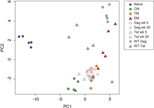 Principal component analysis of transcription factor expression profiles from SIV-specific MHC tetramer-sorted CD8+ T cells from animals vaccinated with SIVΔnef, animals infected with wild-type SIV, and sorted CD8+ T cell subsets.Plot of principal components 1 and 2 for each of the expression profiles assessed from sorted naïve and memory CD8+ T cell subsets, SIV-specific MHC tetramer-sorted CD8+ T cells isolated from SIVΔnef-vaccinated animals, and MHC tetramer-sorted CD8+ T cells isolated from animals (n = 5) at 20 weeks following wild-type SIV infection. Principal components 1 and 2 explain 77 percent of cumulative total variance.