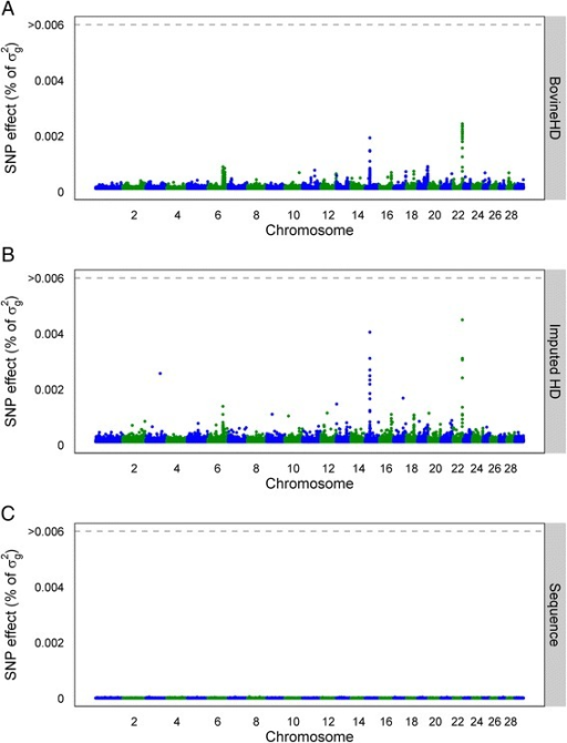 Manhattan plot with estimated SNP effects (% of σg2) for somatic cell score (SCS) using the BSSVS model. Estimated SNP effects (% of σg2) based on the BSSVS model for somatic cell score using BovineHD data (a), ImputedHD data (b), and imputed sequence data (c)