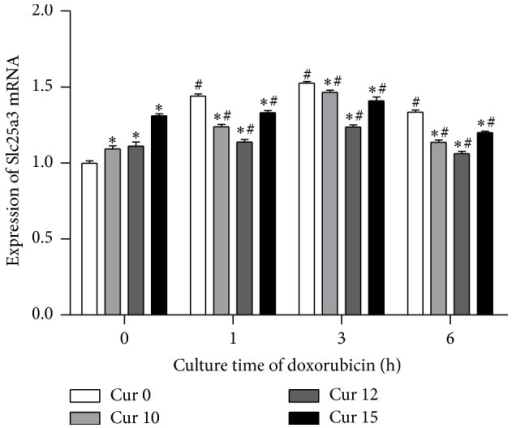 The expression of PiC (Slc25a3) gene was significantly increased by doxorubicin, while curcumin decreased PiC expression. In addition, the PiC in groups of Cur 0 was also significantly increased over time following doxorubicin treatment of the cells. (∗P < 0.05 versus Cur 0, Dox + at each time point) (#P < 0.05 versus negative control (Dox 0 h, Cur 0 min)).