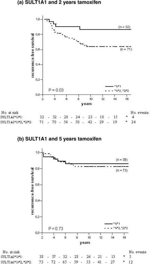 Recurrence-free survival in ER-positive patients with different genotypes of SULT1A1 and tamoxifen randomisation. The solid line represents patients homozygous for the SULT1A1*1 allele, and the dotted line represents patients homozygous or heterozygous for the SULT1A1*2 allele. (a) SULT1A1 and 2 years of tamoxifen therapy; (b) SULT1A1 and 5 years of tamoxifen therapy.
