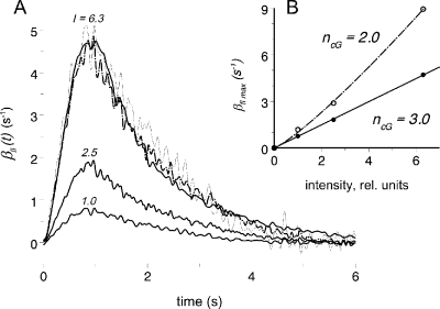 Intensity dependence of the PDE activity. (A) Series of PDE responses of the same cell to flashes of various intensities computed assuming ncG = 3 (solid lines). Numbers near the curves show relative intensities of the flashes. Relative intensity 1 = 10 R*. Dashed lines are responses to weaker flashes scaled up to the brightest flash proportional to the intensity ratio. Trace I = 2.5 is average of three recordings; other traces, single recordings. (B, inset) Response versus intensity curves of the cell shown in A, plotted under assumption ncG = 3 (solid line through dots) or ncG = 2 (interrupted line through empty circles). ncG = 3 yields linear R versus I function, whereas that for ncG = 2 is nonlinear. Thus, the value ncG = 3 is accepted in all calculations.