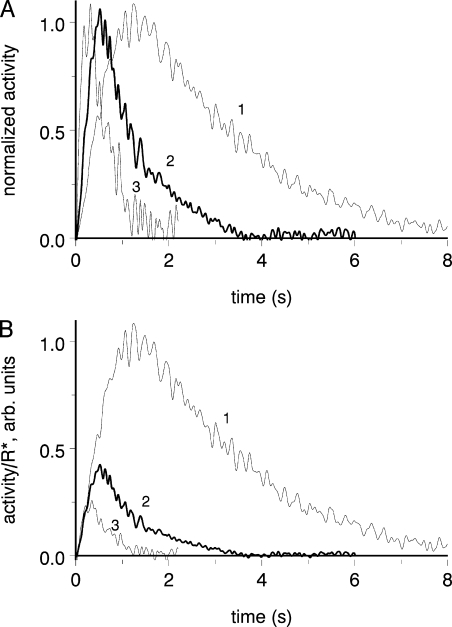 Effect of light adaptation on the time course and amplification of PDE activation. Same cell as in Fig. 3. (A) Flash-induced PDE response in dark adaptation (curve 1) and on the steady backgrounds that was applied before the jump into 0 Na+, 0 Ca2+ solution and resulted in 27% (curve 2) and 42% (curve 3) suppression of the dark current. Responses are scaled to unity with respect to their peaks to more clearly show kinetic changes. Flash intensity 13 R* (dark), 159 R* (on background 170 R*s−1), and 82 R* (on background 490 R*s−1). Background-induced steady PDE activity (βs) is 2.7 s−1 on weaker and 3.6 s−1 on brighter background. (B) Same responses as in A, but the responses on background, instead of normalization to unity, are scaled down inversely proportional to the ratio of flash intensities. Fronts of the three curves virtually coincide, showing that the rate of activation of the cascade (amplification) is not affected by light adaptation.