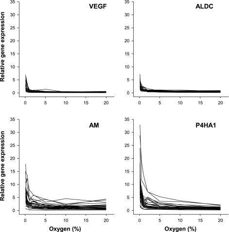 Relative expression of vascular endothelial growth factor (VEGF), aldolase C (ALDC), adrenomedullin (AM), and prolyl-4-hydroxylase α1 (P4HA1) over a range of oxygen tensions in peripheral blood lymphocytes. Data are for 3 repeat experiments on each of 10 human subjects.