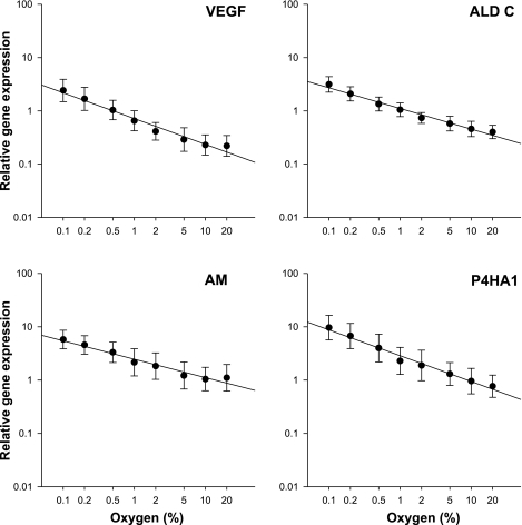 Mean values for relative expression of VEGF, ALDC, AM, and P4HA1 at 20–0.1% O2 from all repeat experiments on all subjects plotted on a double logarithmic scale. Error bars are ±SD for the intersubject variability. Lines are the best fit by simple linear regression.