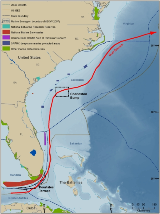 The SAB-Florida East Coast Large Marine Ecosystem.The large red arrow represents the Gulf Stream.