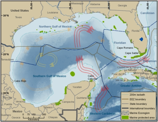 Gulf of Mexico Large Marine Ecosystem, surrounded by United States, Mexico, and Cuba.Map also shows EEZ boundaries, state boundaries, international boundaries, marine ecoregions, and marine protected areas. The large pink arrows in the eastern Gulf represent the dominant Loop Current.