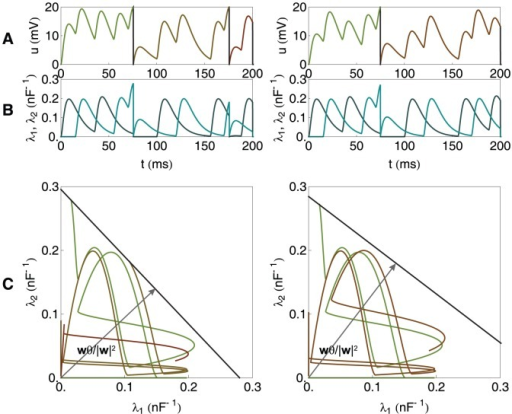 A graphical illustration of the chronotron problem for a neuron with 2 synapses (continued).As in Fig. 1, but for other values of , resulted through the application of E-learning, starting from the situation in Fig. 1, and having as a target the generation of one spike at 75 ms. Left: during learning. Right: after learning converged.