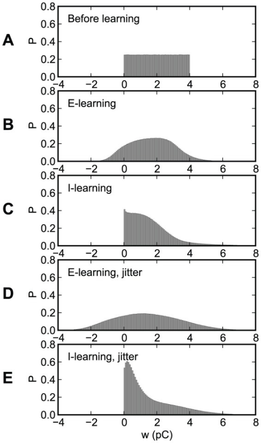 The distribution of the synaptic efficacies, before and after learning, for the experiments presented in Fig. 7.(A) Before learning. (B)–(E) After 400 learning epochs. (B), (D) E-learning. (C), (E) I-learning. (B), (C) No jitter. (D), (E) A gaussian jitter with an amplitude of 5 ms is applied to the inputs.